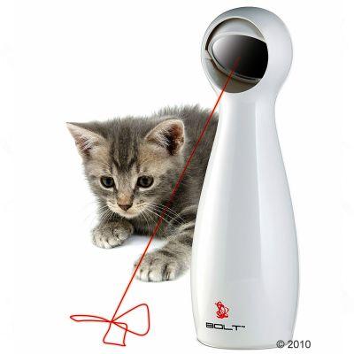 laser pour chat