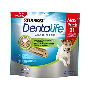 dentalife
