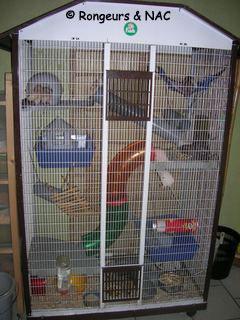 accessoire cage rat
