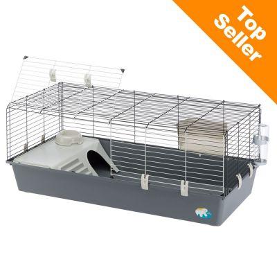cage de cochon d inde