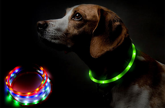 collier lumineux pour chien rechargeable