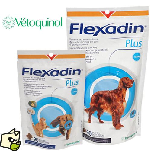flexadin chien