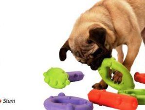 jouet pour chien destructeur