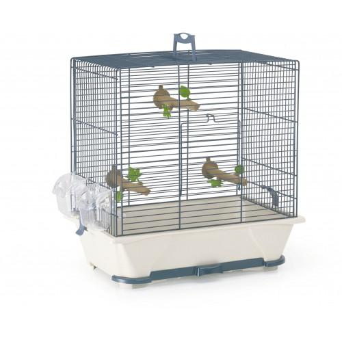 oiseau cage