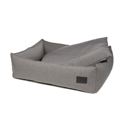 panier chien gris